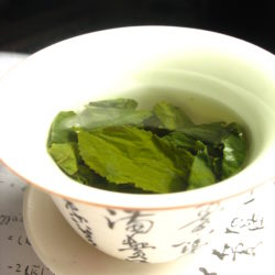 Tea_leaves_steeping_in_a_zhong_čaj_05