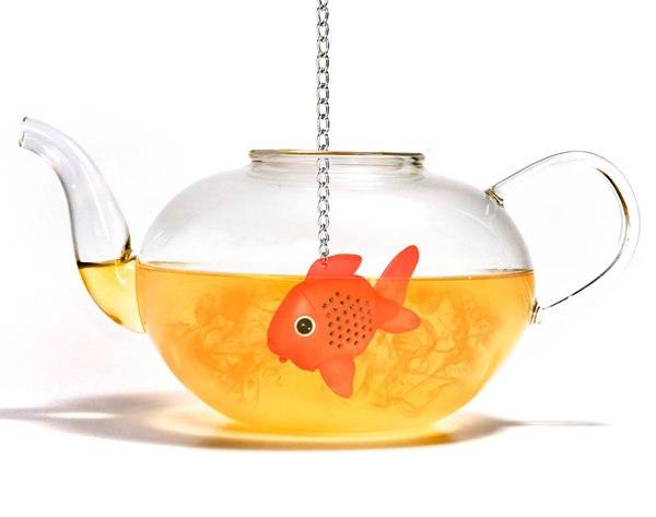 pesciolino-infusore1